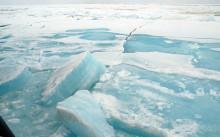 Halvtid för polarforskningsexpedition