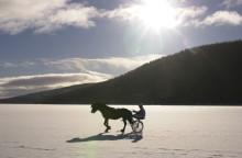Skid-VM i Falun och istrav på Siljan med Jim Frick