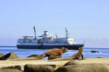 Månadens resa med Solresor: Resa till Ecuador med expeditioner på Galapagosöarna