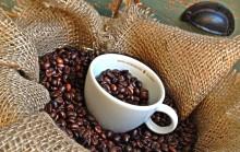Stockholm Meeting Selection & Arvid Nordquists kaffe skapar kaffekoncept