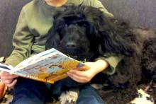 Läshunden Rufsa ger eleverna läslust