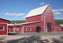 Hemköp och Willys säkrar grisproduktion på värmländska gårdar