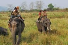 Brahmaputra – Elvecruise med innlagt safari