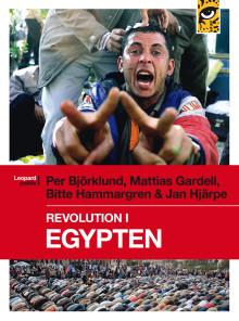 Första boken om revolutionen i Egypten