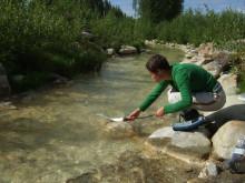 Naturlig rening av kväve från gruvor