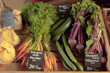 """Ekologisk mat erbjuder unga vuxna chans till """"psykologisk blomstring"""""""