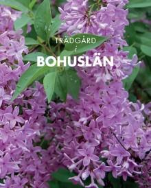Kunskap och inspiration – trädgården är tema för Bohusläns museums årsbok.
