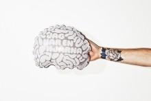 Uppblåsbara hjärnor ska bidra till minskad langning av alkohol