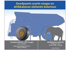 Goodyearin suurin rengas on elefantin kokoinen