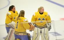 """#44 – FREDAG: """"Hockey är en överklassport"""""""