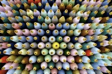 Svenskt vattensamarbetsprojekt får hållbarhetsutmärkelse vid nordisk modebranschgala