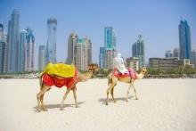 Cruise til Emiratene og spennende restplasser for deg som kan pakke raskt!