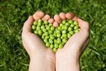 Findus i dialog med landsbygdsminister Sven-Erik Bucht om den nationella livsmededelsstrategin