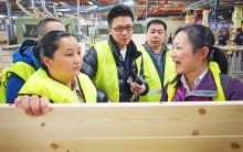 Svenskt trä kan bli storsäljare i Kina