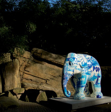 Mynewsdesk becomes an international newsroom partner of Elephant Parade