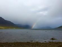 De vilda Västfjordarna