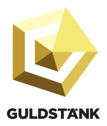 Vinnarna har korats vid Västerås näringslivsgala - Guldstänk