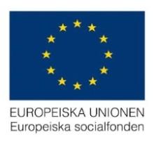 Europeiska socialfonden i samarbete med utbildning.se