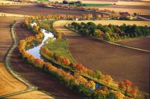Göta kanals trädallé får kunglig tillökning