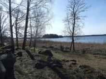 Sveriges största skogsfastighet blir din för 150 miljoner kronor