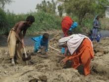 Insats för 950 familjer i Pakistan