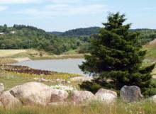 Vattendammarna vid Östra Torp - en miljöinvestering