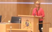 Frågan som enade höger och vänster mot Wallström