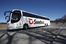 Swebus Filmbuss: Tintin populärast ombord