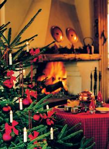 8 av 10 ska ha julgran i år. − Klassiska rödgranen mest populär men kungsgranen hack i häl