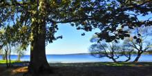 Vombsjön är värd 1,6 miljarder - varje år