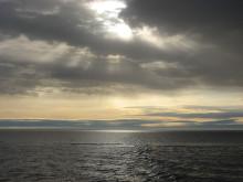 Östersjöns framtid – mer regn och mindre fisk