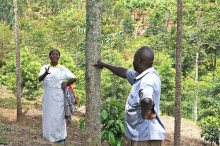 ZeroMissions klimatkompensationsprojekt i Uganda prisat av FN
