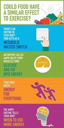 Nestlé kehittämässä liikunnan lailla vaikuttavia elintarvikkeita