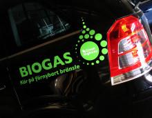 Sundsvalls kommun är bland de bästa i landet på miljöbilar