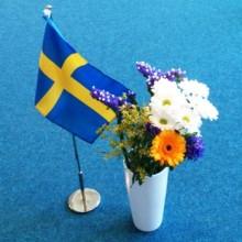 Omställning till ett mer hållbart Sverige