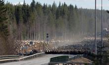 Skogsbruk och rennäring: Mindre konflikter med moderna GIS-kartor