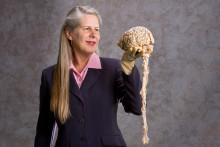 Strokedrabbad hjärnforskare med i akademisk talkshow