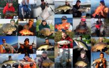 30 000 stora fiskar