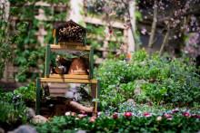 Längtan efter våren lockade storpublik till Trädgårdsmässan
