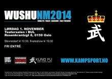 NM Wushu 2014