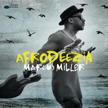 "Marcus Miller: Nytt album ""Afrodeezia"""