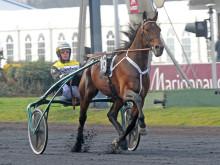 Maharajah i Olympiatravets tredje deltävling på Mantorp