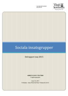 Rapport Sociala insatsgrupper.pdf