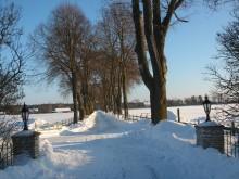 Vinterpromenader och styrelsemöte på Ejmunds
