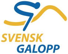Gå till Svensk Galopps nyhetsrum