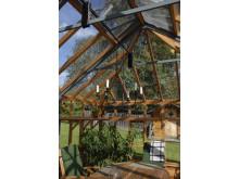 gediget och elegant växthus i cederträ