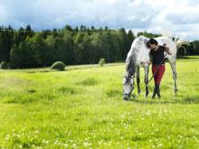 Helena Lundbäck engagerar sig i östgötahästar