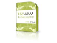 BizView för Microsoft BI