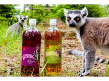 Lemur og Lemurium