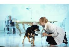 """""""En hunds hjärta"""", bild 1"""
